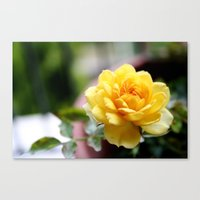 Satin Canvas Print