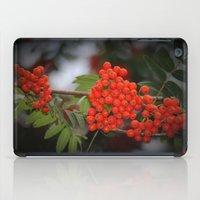 Rote Beeren iPad Case