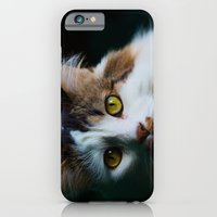 iPhone & iPod Case featuring Kootie by Brian Walsh