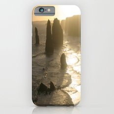 Evolutionary history of life on Earth  iPhone 6 Slim Case