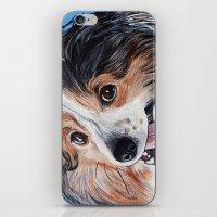 Sheltie Dog  iPhone & iPod Skin