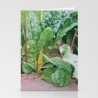Rainbow Chard Stationery Cards