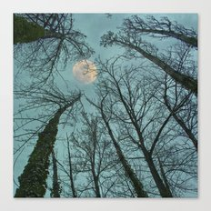 Magic moon over the trees Canvas Print