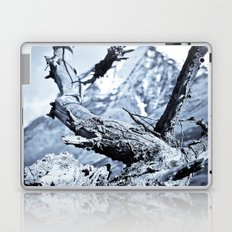 Nature dry. Laptop & iPad Skin