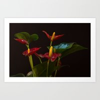 Flamingo Flowers Art Print