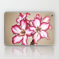 Exotic Flower Laptop & iPad Skin