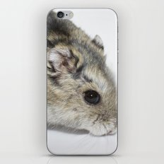 cheesecake (my hamster)  iPhone & iPod Skin