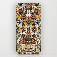 Reflecting Pollock 2 iPhone & iPod Skin