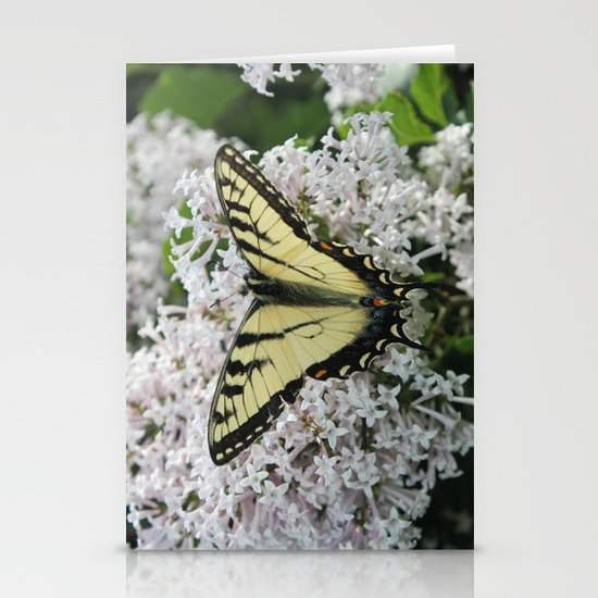 Butterfly Delight Stationery Card