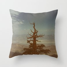 From Way Up Here Throw Pillow