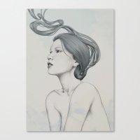 235 Canvas Print