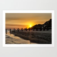 Crow Point Art Print