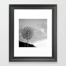 Fractal View Framed Art Print