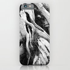 our roots go deep.  iPhone 6 Slim Case