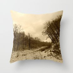 Parting Ways Throw Pillow