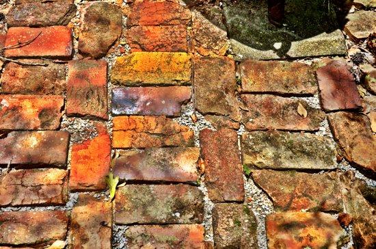 Bricks Art Print