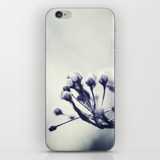 Spring in Black and White III iPhone & iPod Skin