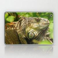 Costa Rican Iguana Laptop & iPad Skin