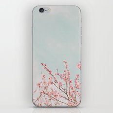 Waving in the Sky iPhone & iPod Skin