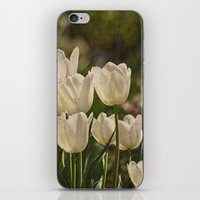 Last Year At The Arboret… iPhone & iPod Skin