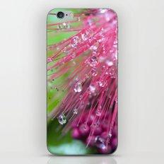 Glistening Diamonds of Pink iPhone & iPod Skin