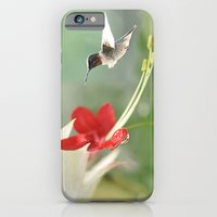 Hummingbird In Flight iPhone 6 Slim Case