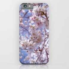 Blossom, Bloomin Blossom.  iPhone 6 Slim Case