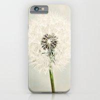 Dandelion Dreams  iPhone 6 Slim Case