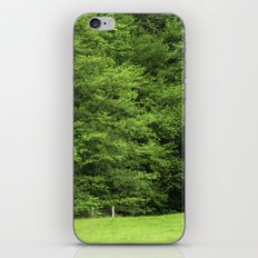 bosque iPhone & iPod Skin