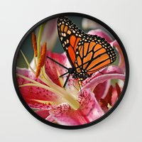 Monarch Butterfly on a Stargazer Lily Wall Clock