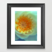 So Magic Water Lily 729 Framed Art Print