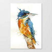 Mr Kingfisher Canvas Print