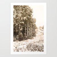 Winter Roadside Art Print