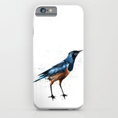 African Starling Slim Case iPhone 6s