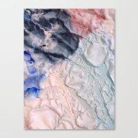 Folds II Canvas Print