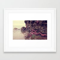 Starfish Addicted  Framed Art Print