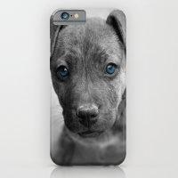 Siouxsie iPhone 6 Slim Case