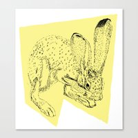 Yellow Hare Canvas Print