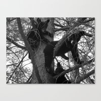 Berry Beary Canvas Print