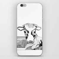 maverick iPhone & iPod Skin