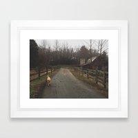 Farm Dog  Framed Art Print