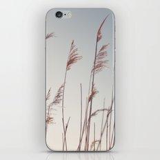 winter dies... iPhone & iPod Skin
