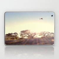 A Hawks View Laptop & iPad Skin