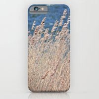 iPhone & iPod Case featuring ears with wind by Lo Coco Agostino