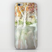 Fall Trees iPhone & iPod Skin