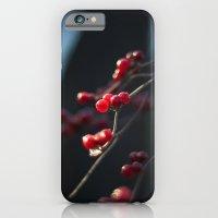 iPhone & iPod Case featuring Winter Berries II by Katie Kirkland Photography