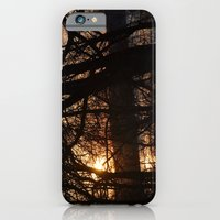 Winter Sun And River iPhone 6 Slim Case