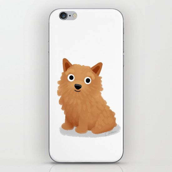 Norwich Terrier - Cute Dog Series iPhone & iPod Skin
