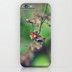 The Summer Bug Slim Case iPhone 6s
