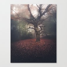 Gentle November Canvas Print
